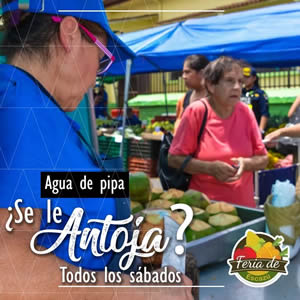 Feria01-Setiembre